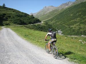 Ciclista subiendo en montaña